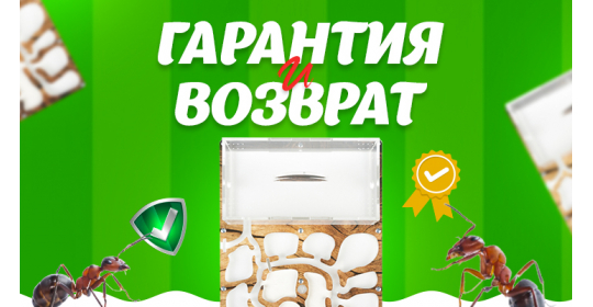 "Условия гарантии и возврата в интернет-магазине ""Мистер Ант"""