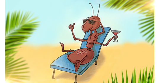 Вот это поворот: муравьи - бездельники